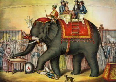 Vers un réenchantement du cirque de demain ?