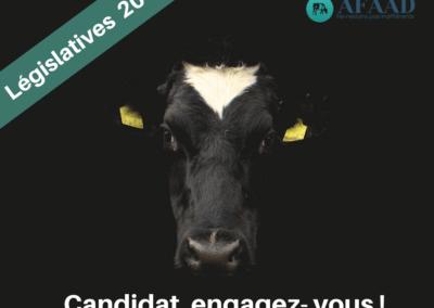 Élections législatives : interpellez vos candidats sur les conditions d'abattage