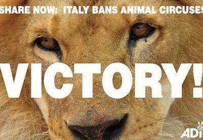L'Italie montre l'exemple et bannit les cirques avec animaux !