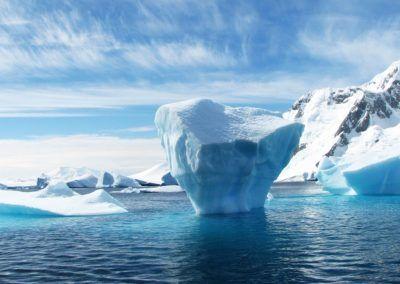 Créations de deux aires marines protégées en Antarctique et au Mexique