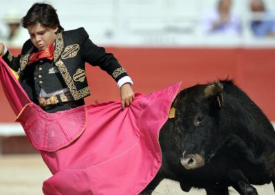 L'ONU demande à l'Espagne une interdiction des corridas pour les moins de 18 ans