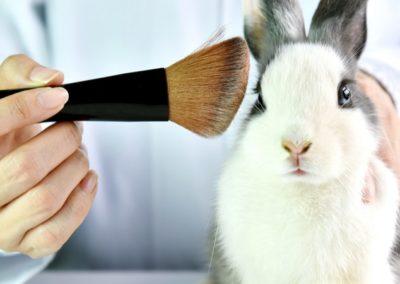 Le Parlement européen souhaite une interdiction mondiale de l'expérimentation animale dans les cosmétiques