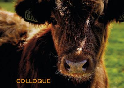 Colloque 2018 : «Améliorer le bien-être des animaux d'élevage par la libération de l'information»