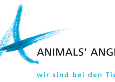 Animals' Angels