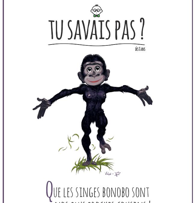 TU SAVAIS PAS ? N°12 – Que les singes bonobo sont nos plus proches cousins !