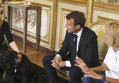 """""""Brigitte Bardot confiante après son entretien avec Emmanuel Macron"""""""