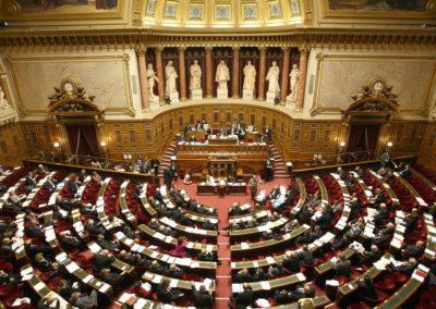 Bien-être animal et Loi agriculture et alimentation : le Sénat suit les décisions des députés