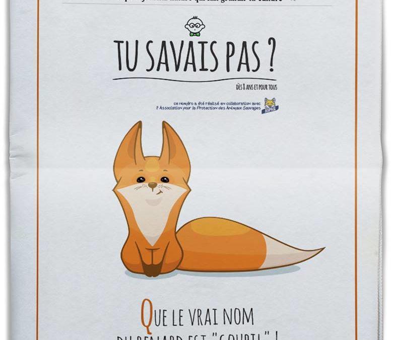 """TU SAVAIS PAS ? N°14 Que le vrai nom du renard est """"goupil"""" !"""