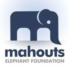 Mahouts Elephant Foundation