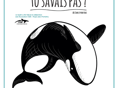 TU SAVAIS PAS ? n°19 Que l'orque est la plus grande prédatrice des mers !