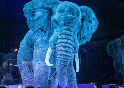 Le cirque Roncalli trouve la parade à la maltraitance animale