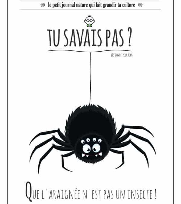 TU SAVAIS PAS ? n°28 Que l'araignée n'est pas un insecte !